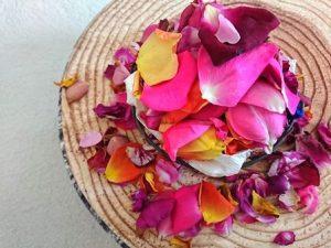 バラの花びら散乱